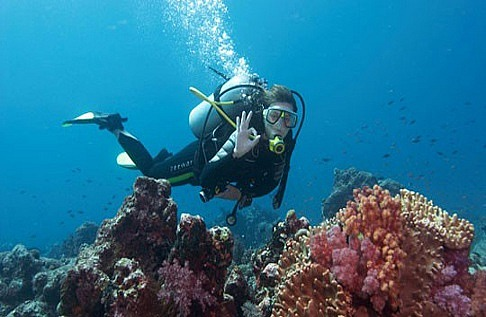Diving in Cambodia – 2nd Part